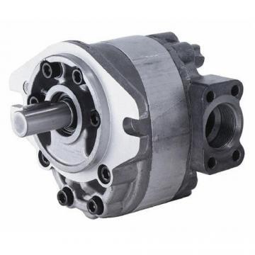 Parker piston pump PV62R1EC00 PV62R1EC02 PV62R1EC00BP PV62 hydraulic pump