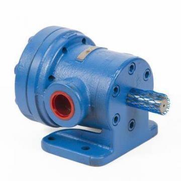 Rotary Vane Italian Water Pump