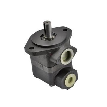 Denison T6 Series Vane Pump Spare Parts Rotor and Vane